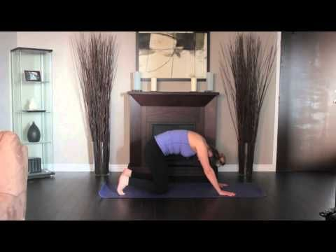 hatha yoga  catcow pose  downward dog yoga pose easy