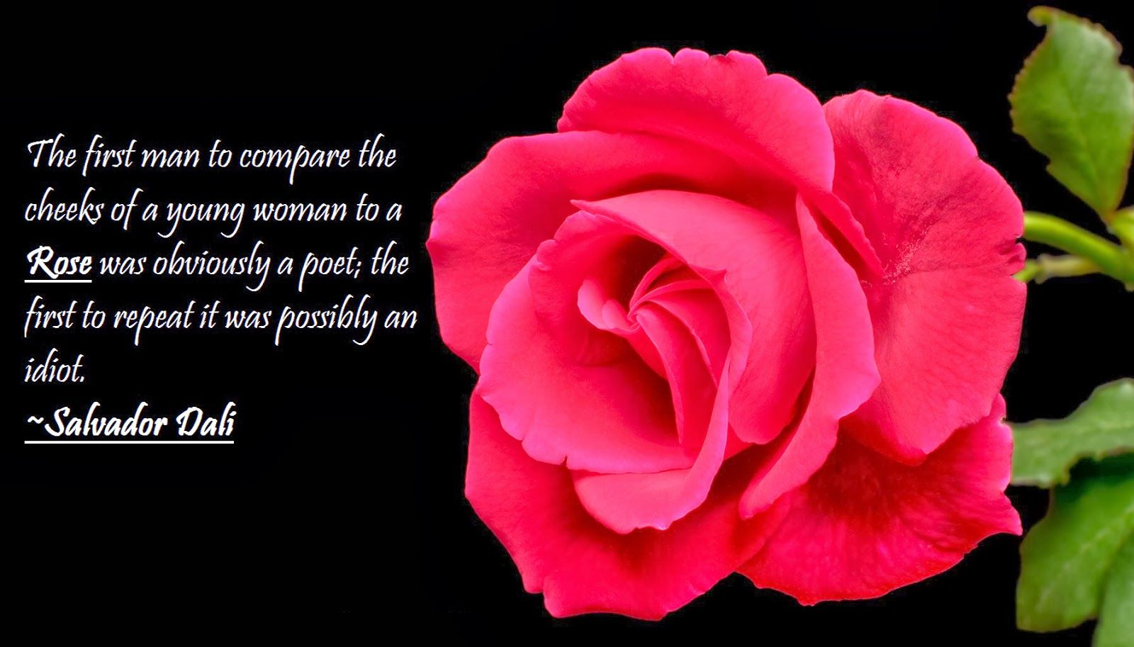 23 Rose Quotes Rose Quotes Happy Rose Day Wallpaper Flower Quotes