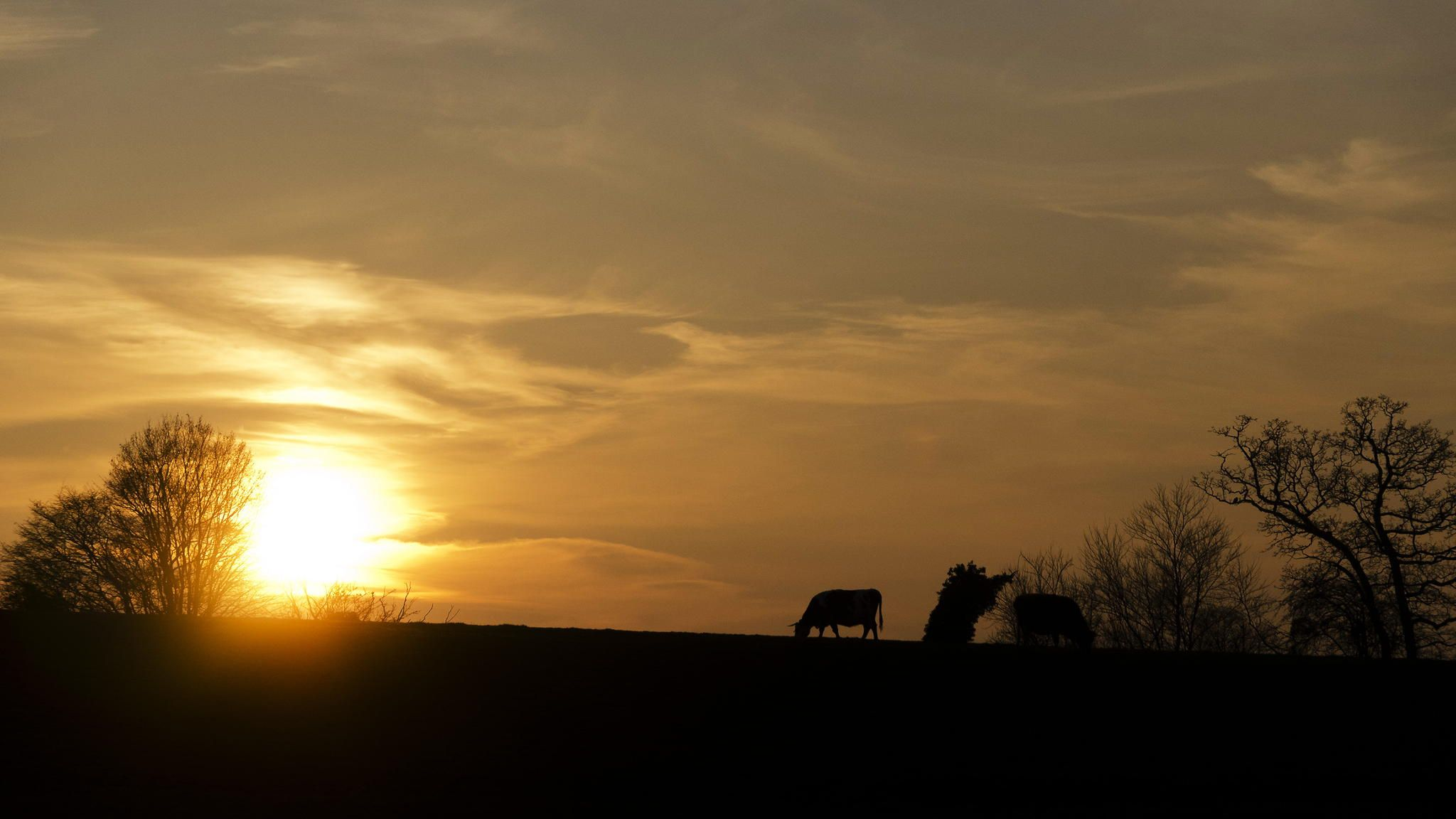 Normandy Sunset by Nathalie  on 500px