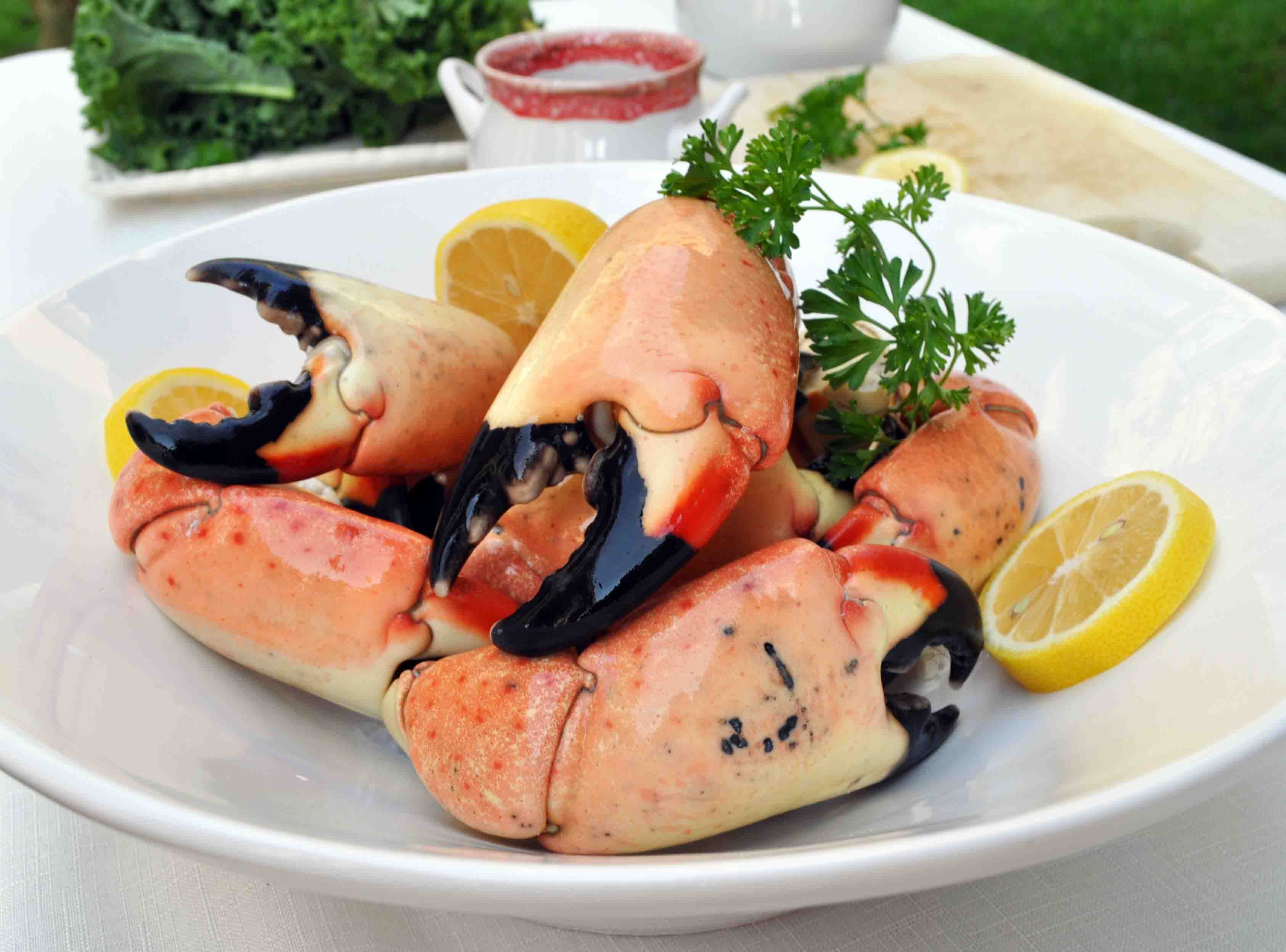 Stone Crab claws! Stone crab, Frozen seafood, Holiday