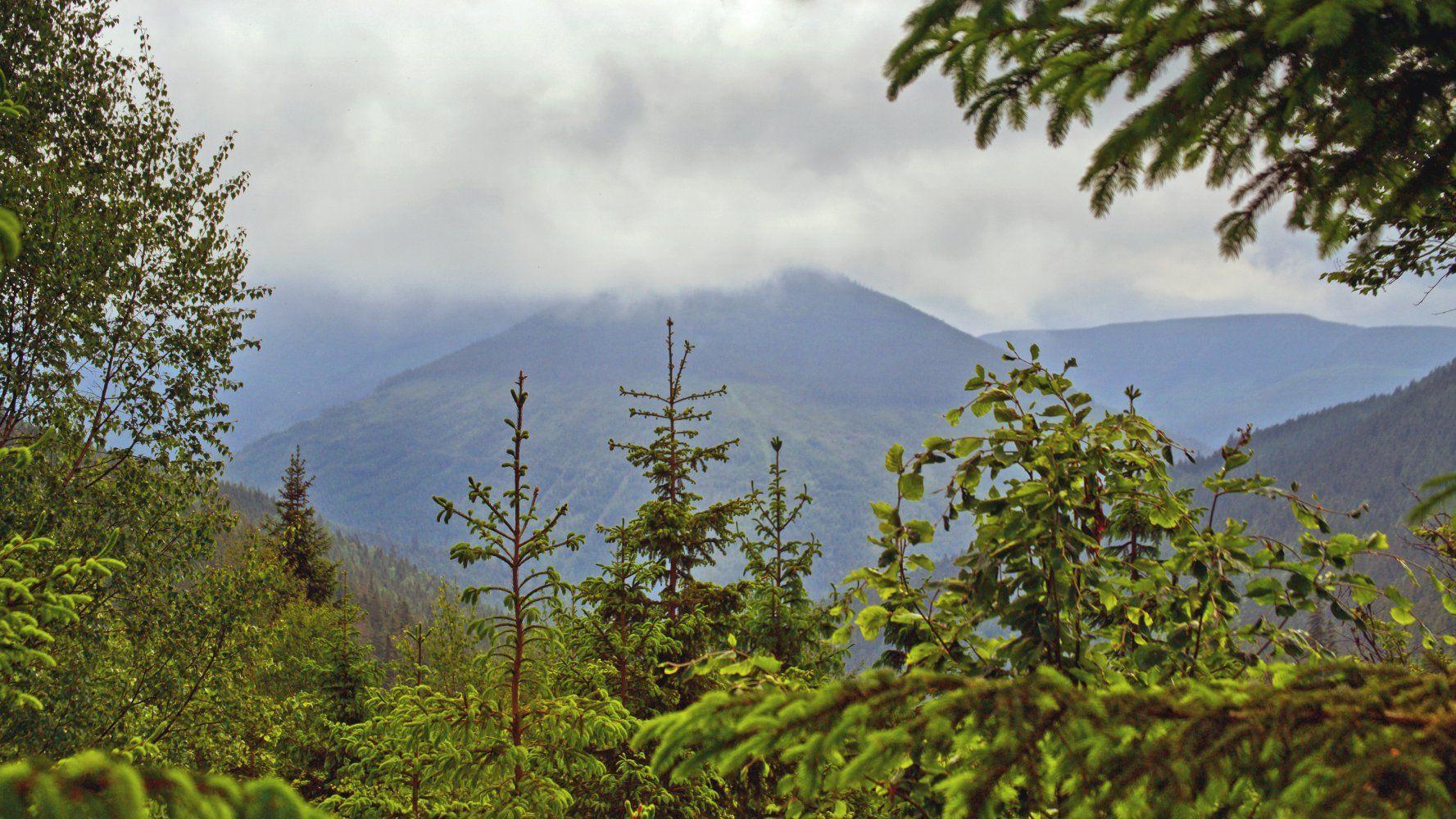Železný vrch z Labského dolu