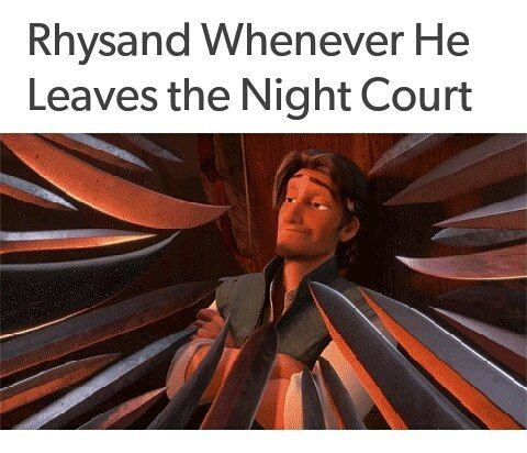 So I guess the fandom has agreed that Rhysand, High Lord of the Night Court IS Flynn Rider #feyreandrhysand