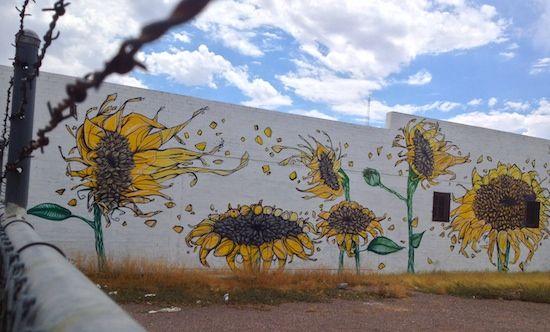 40 Favorite Murals In Phoenix Street Art Graffiti Murals Street Art Art