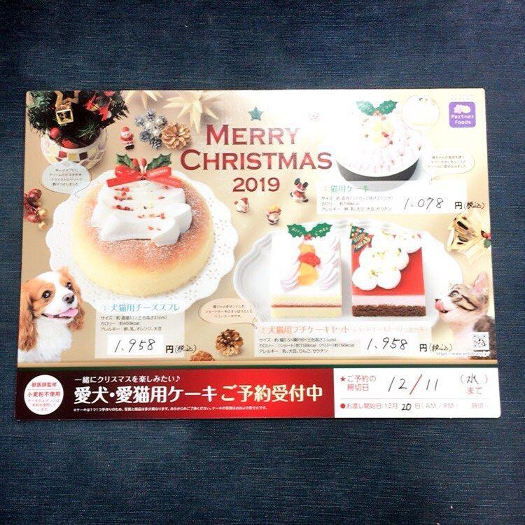こんにちは 新津本店です クリスマスケーキのご予約が始まりました 犬猫用ケーキ が2種類 猫用ケーキ が1種類 令和初のクリスマスを 愛犬愛猫ちゃんとケーキ でお祝いしてみては Merry Merry Christmas Instagram Posts