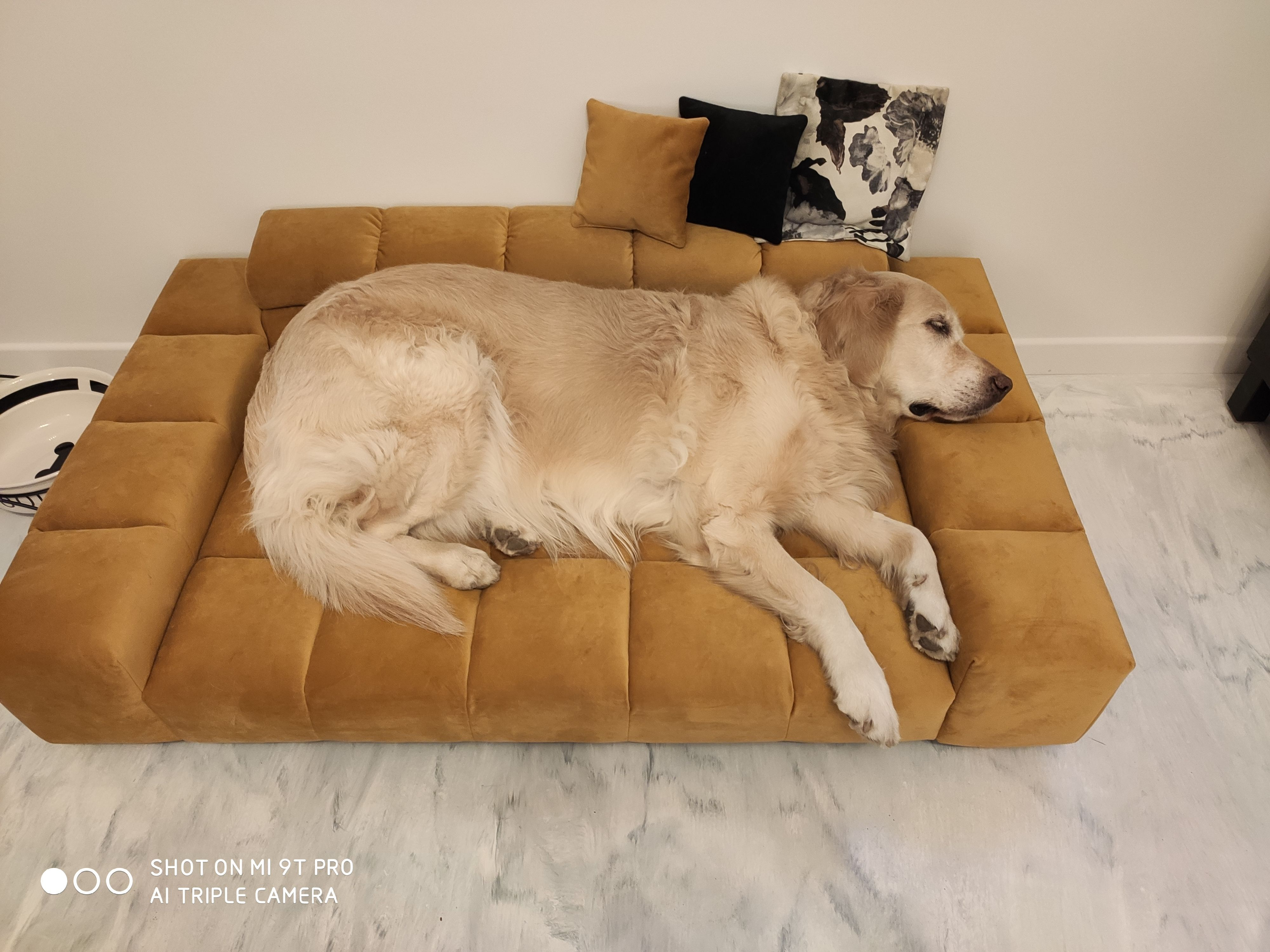 Minisofa Duze Legowisko Dla Psa Couch Home Decor Decor
