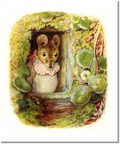 Beatrix Potter II - Beatrix Potter - The Tale of Mrs. Tittlemouse - 1910 - Tittlemouse Looking out Window Painting:
