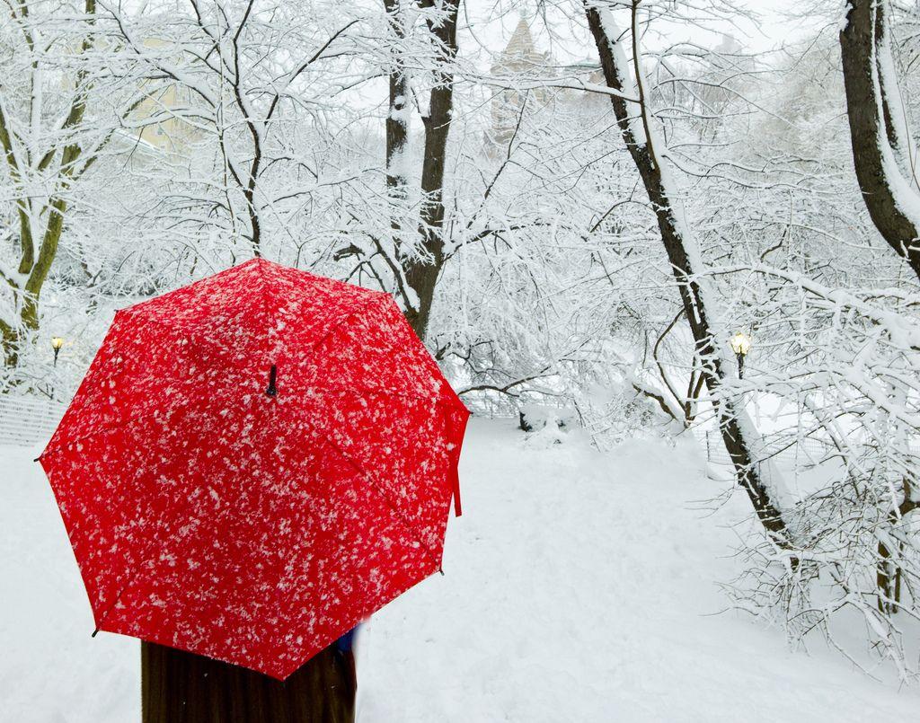 UmbrellaPhotography