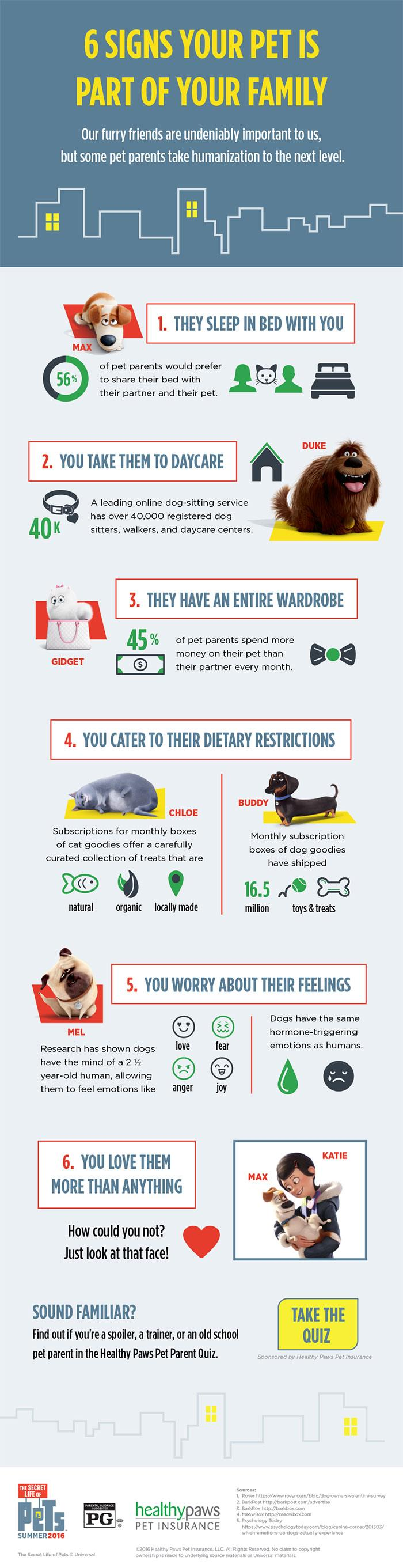 6 Signs Your Pet Is Part Of Your Family