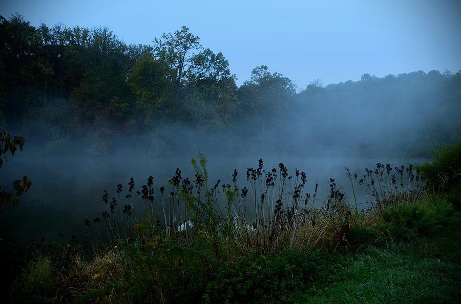 Morning Mist Photograph