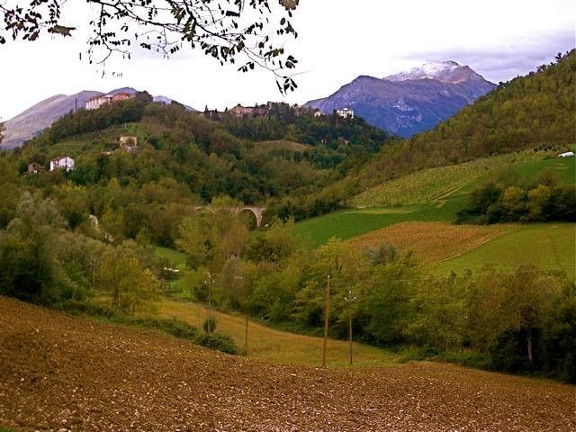 Magical Marche..stop and admire!