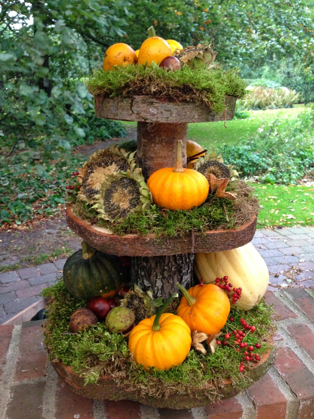 create your own tiered display out of a small tree trunk/branch and make rings out of slices on the verticle, moss, dried sunflowers, pomegranates, nuts, squash, pumpkins and berries #fallseason