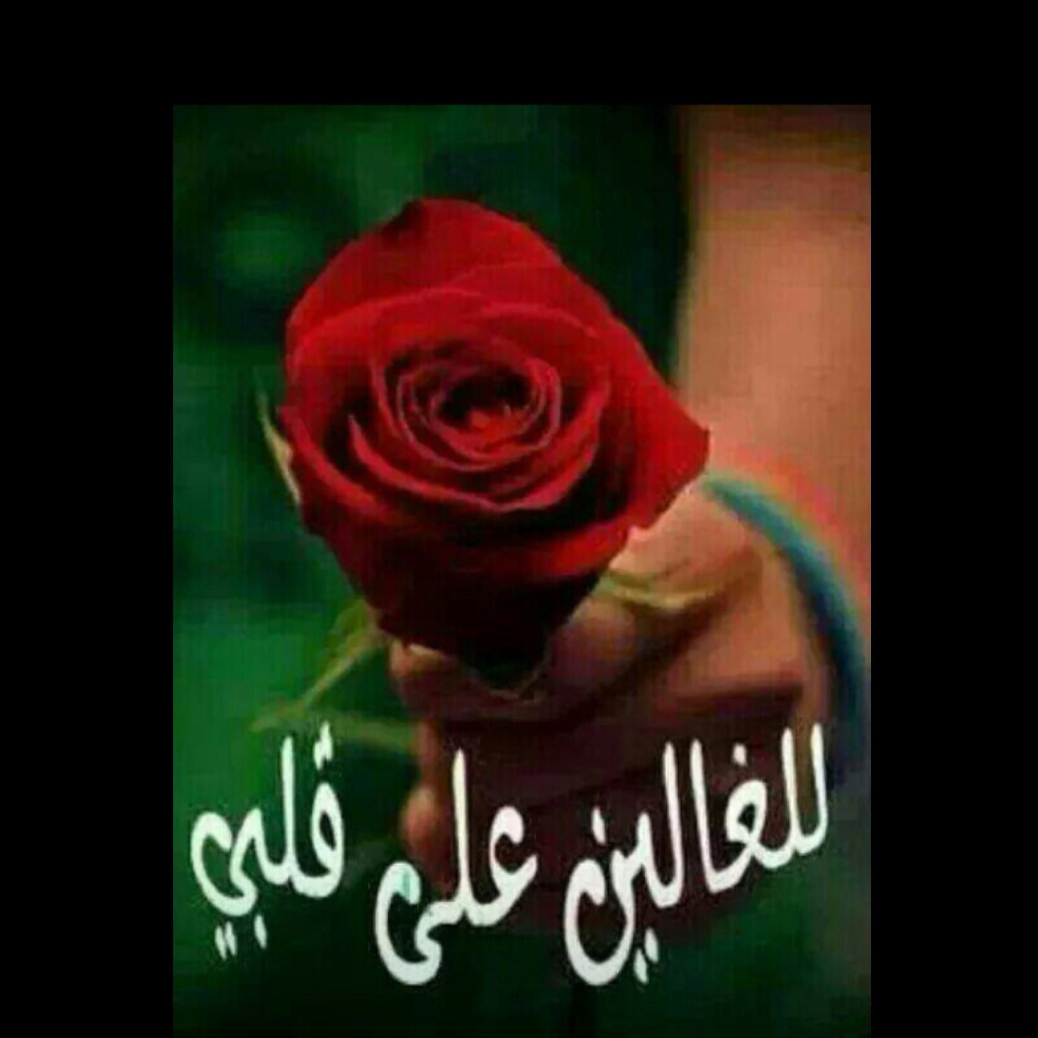 Pin By نور On Flowers Bubbles Wallpaper Good Morning Photos Islam Beliefs
