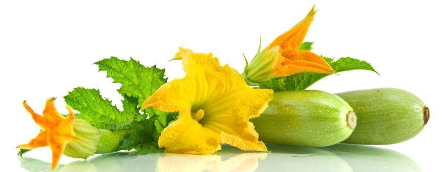 diabetes dieta usar calabacin zucchini