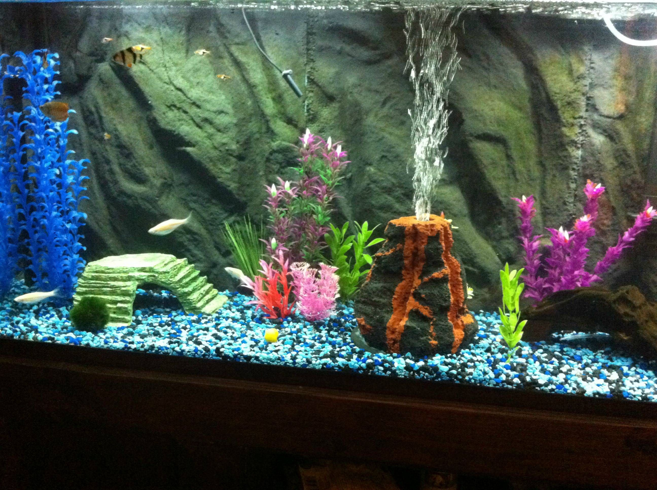 how to sanitize fish tank gravel