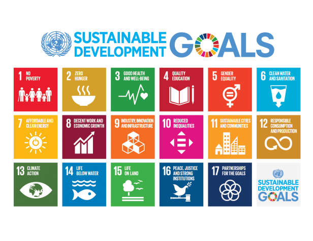 Transforming Our World The 2030 Agenda For Sustainable Development Sustainability Education Un Sustainable Development Goals Sustainable Development Goals