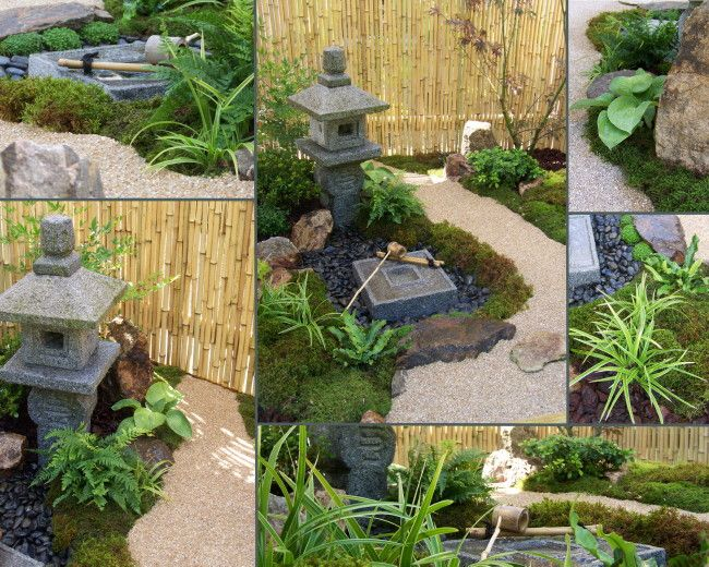 Taille japonaise niwaki video hortitherapie niwakitherapie for Entretien jardin 72
