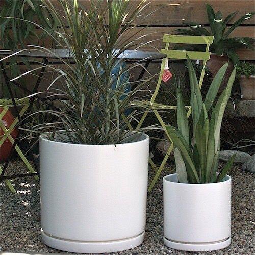 Pottery Mfg S Classic Deep Cylinder In Matte White W A Matching Saucer Cement Flower Pots Diy Flower Pots Planter Pots Indoor