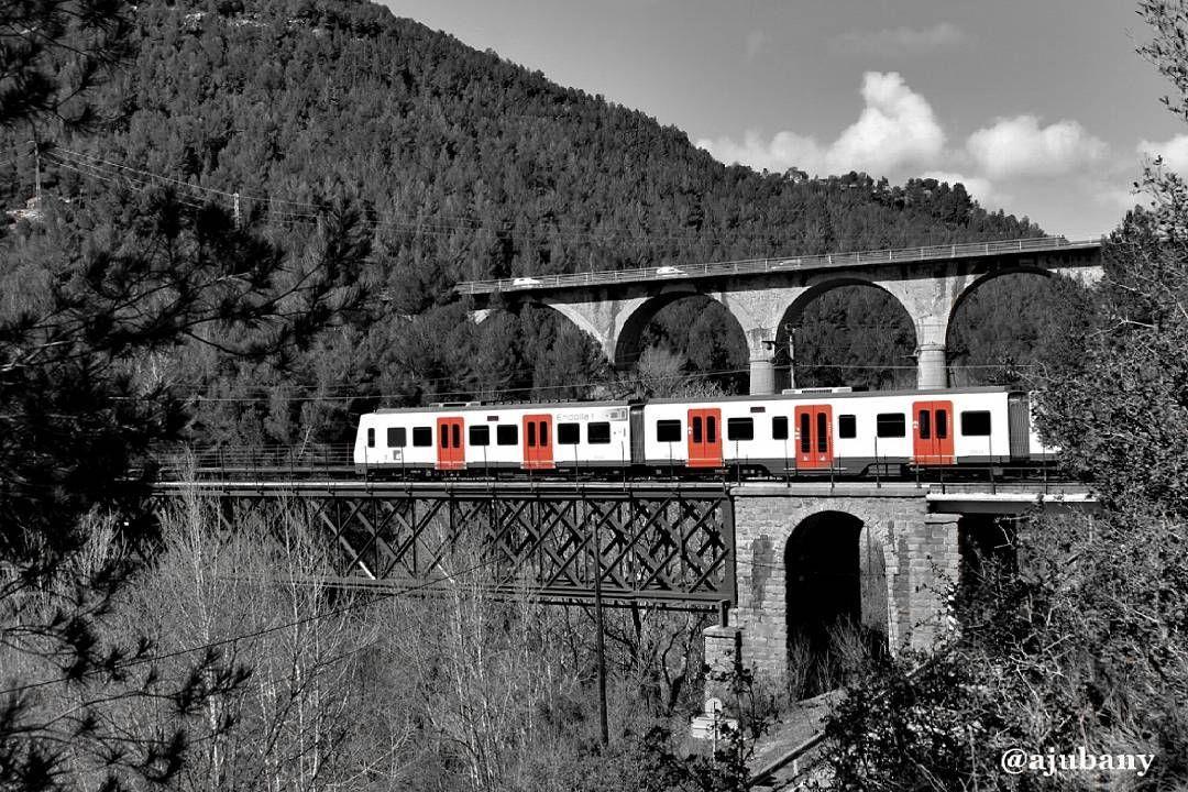 Tren con destino........