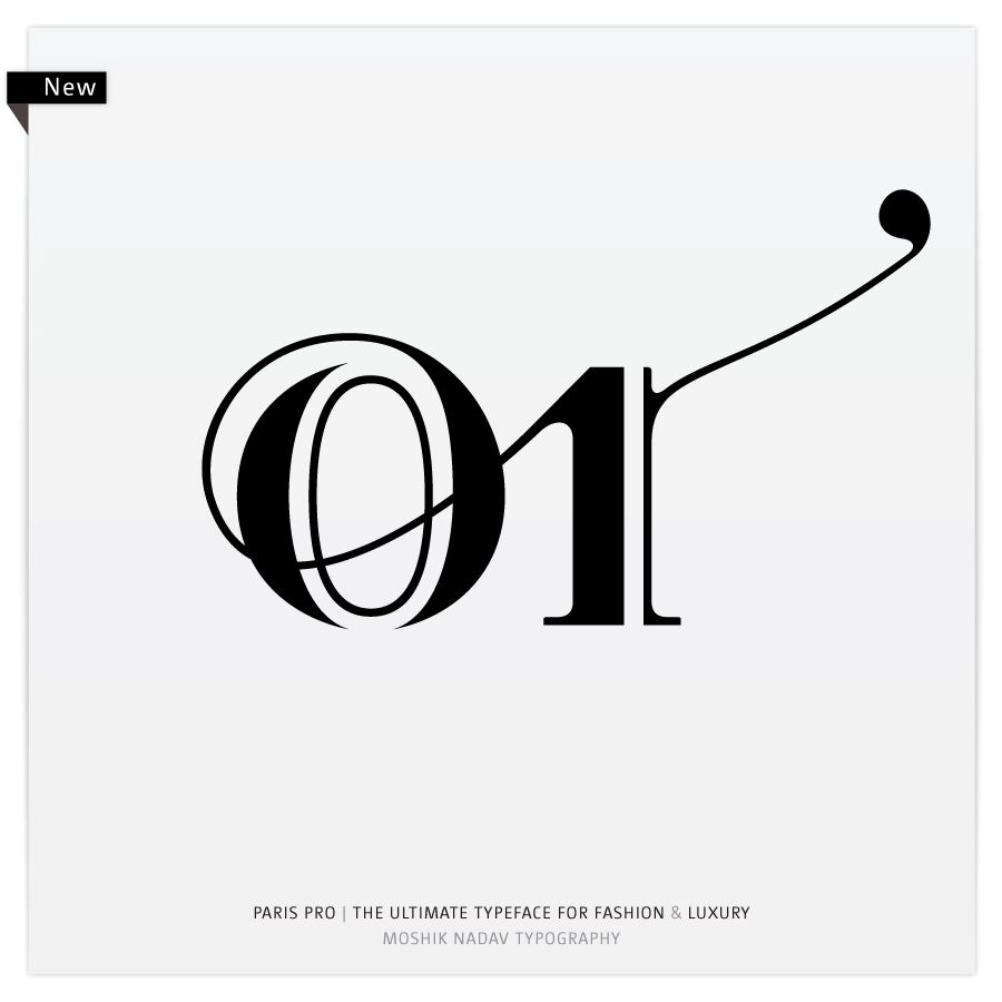 Paris Pro Regular Strip By Moshik Nadav Typography Fashion