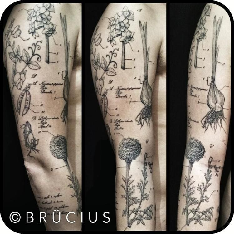 Brucius Tattoo Artist In San Francisco Does Great Realistic Detailed Drawings Charges 500 Per Hour Etching Tattoo Tattoos Nature Tattoos