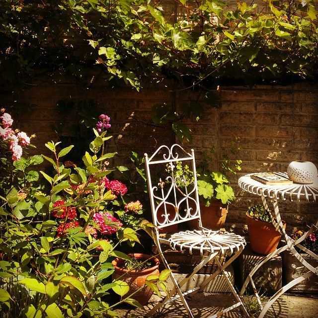 Wild vines and flower pots on patio with vintage furniture