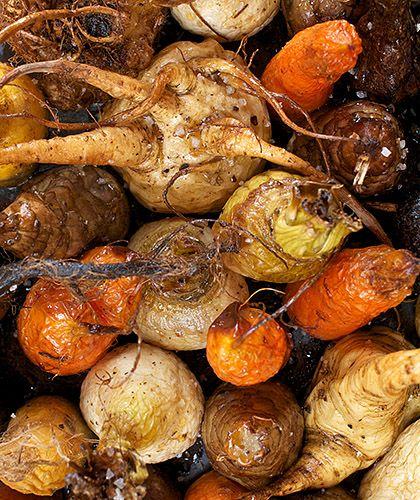 Les l gumes sont essentiellement des racines leur forme - Comment cuisiner du panais ...