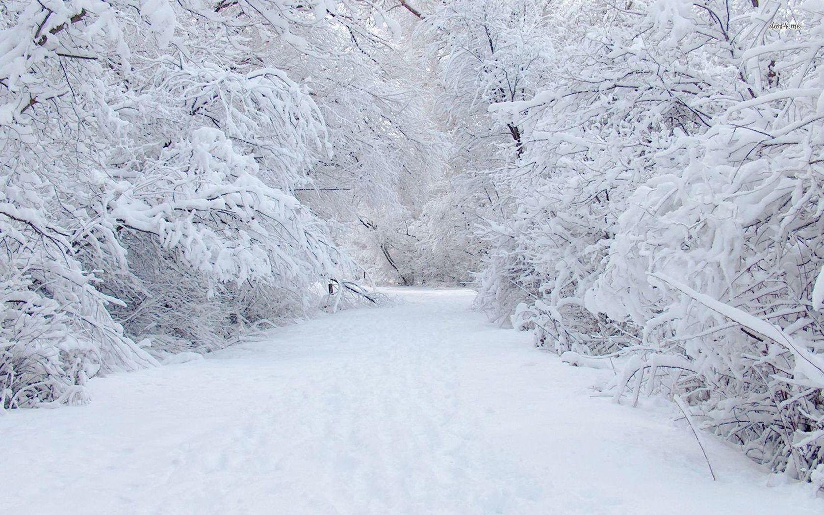 фото скоро снег самые чудесные места