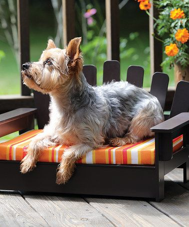 The Pets Need An Adirondack Chair Too! Why Not! ;) #zulily! Adirondack Pet  Chair #zulilyfinds