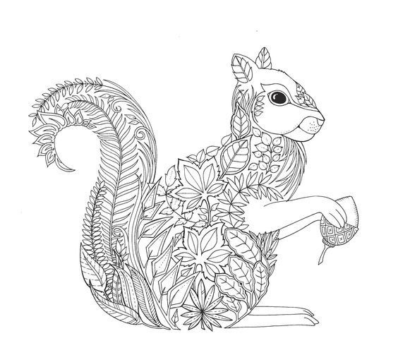 Squirrel Zentangle Coloring Page