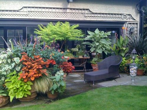 Pin By Fero Cactus On Sensational Pots And Planters Container Interesting Container Garden Design Property
