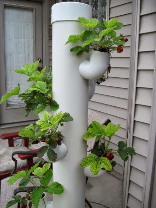 Vertical Garden Ideas That Will Spice Up Your Garden | сад, ландшафт ...