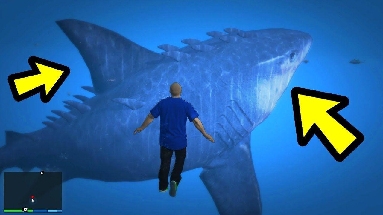 gta 5 shark mod