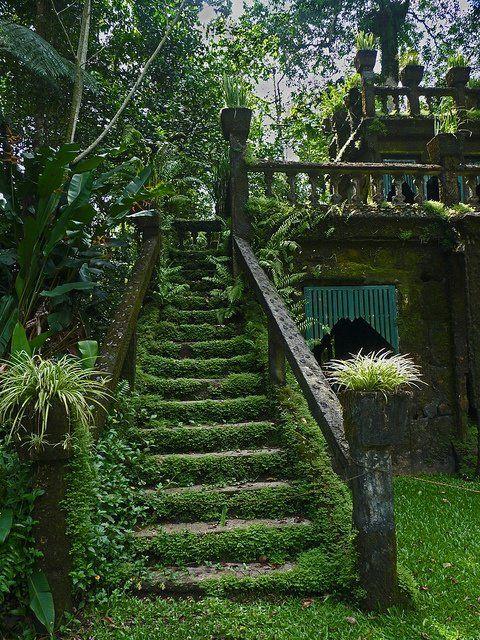 Secret Garden Ideas Dory And Charlotte Pinterest Garden