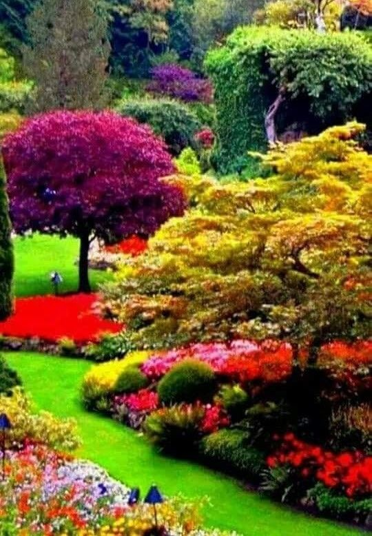 Pin de Rocio Diez en JARDINES Pinterest Paisaje de fantasía - paisajes jardines