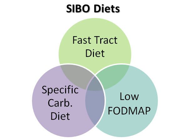 Fast Track Diet Sibo Food List