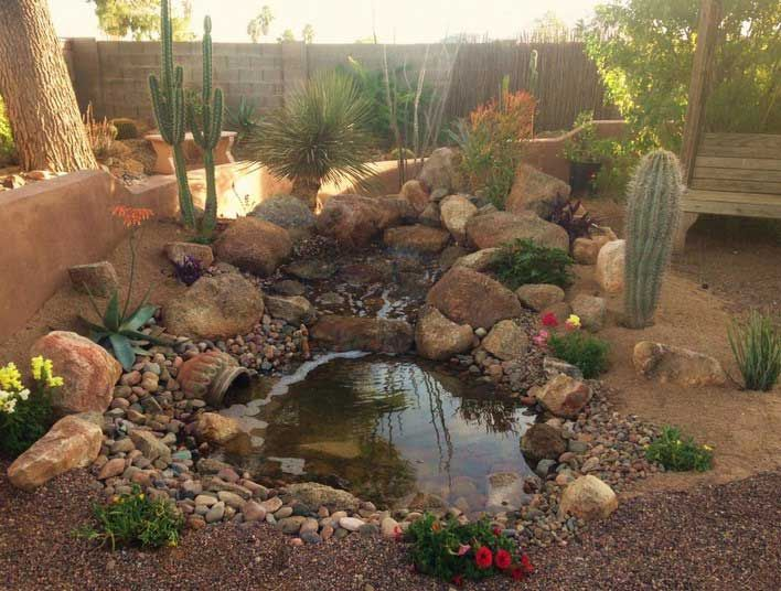 Decorative desert gardens ideas for backyard landscaping design