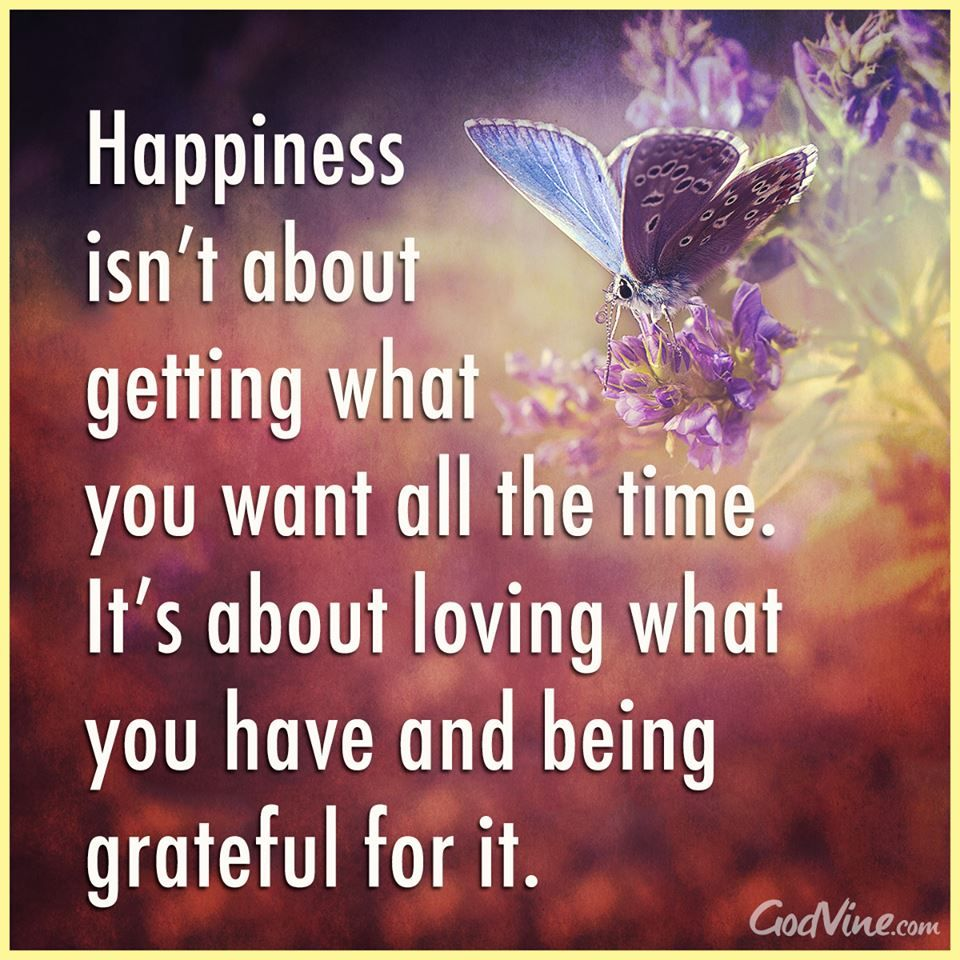 Wisdom Quotes About Life And Happiness Happiness Isn't About Getting What You Want All The Timeit's