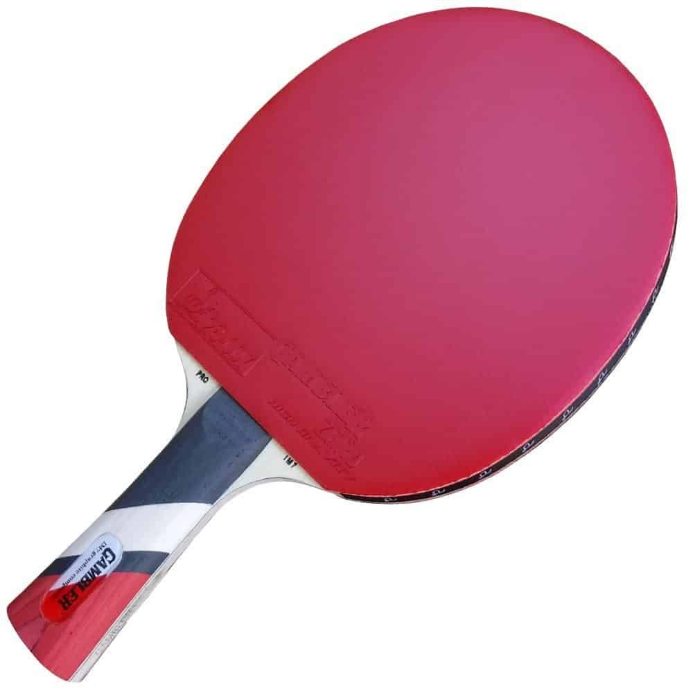Table Tennis Paddle Reviews