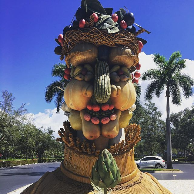 Have You Been To Artis Naples To Check Out The Four Seasons