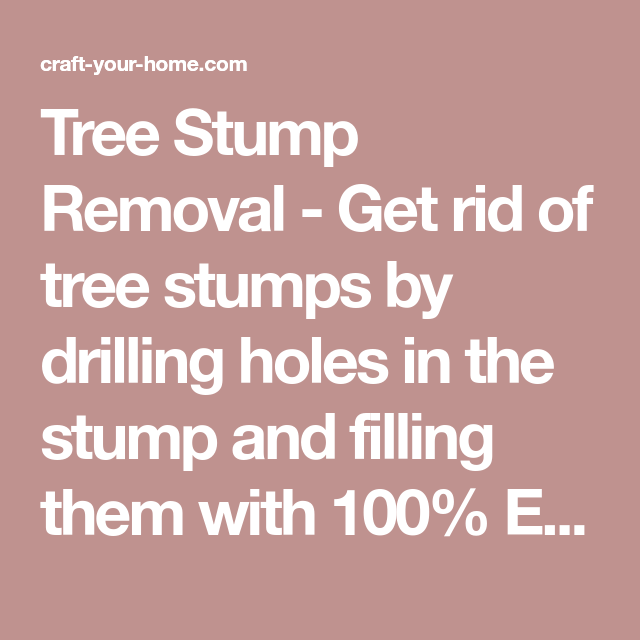 Tree Stump Removal - Get rid of tree stumps by drilling ...