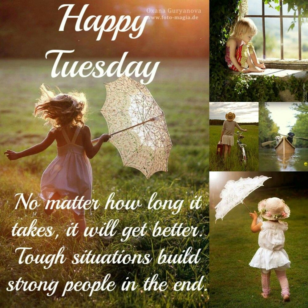 Happy Tuesday Tuesday Humor Morning Memes Good Morning Quotes