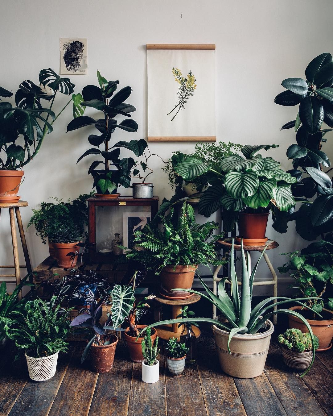 Being Surrounded By Plants Brings A Positive And Creative 400 x 300