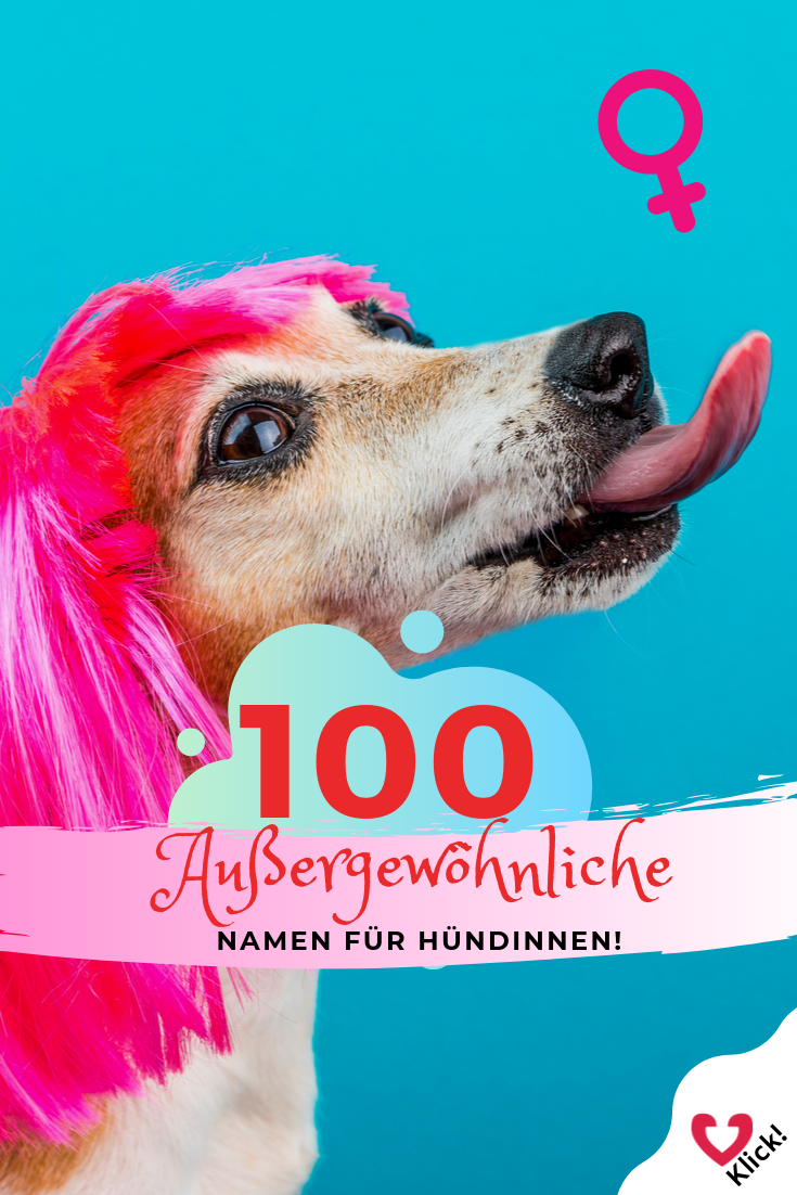100 ungewöhnliche weibliche Hundenamen und ihre Bedeutung