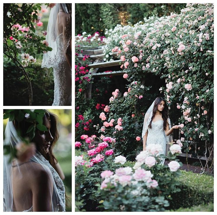 Jasmine Style T162061 on a bride at the Thanksgiving Point Rose Garden in Utah County | Gateway Bridal & Prom | Salt Lake City | Utah Bridal Shop