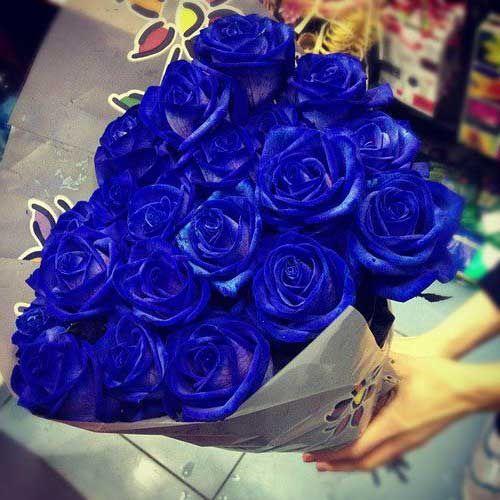 Top 35 Incríveis Bouquet de Rosas: Vermelhas, Azuis, Amarelas  WZ93
