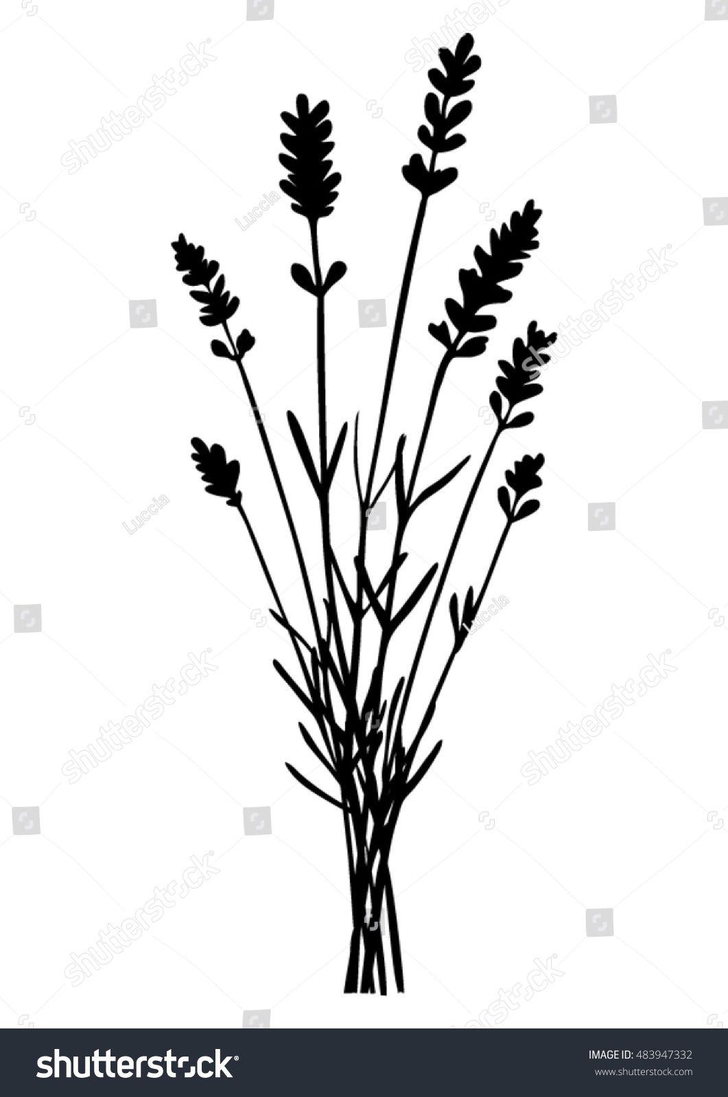 Bunch Of Lavender Flowers Black Silhouette Vector Lavender