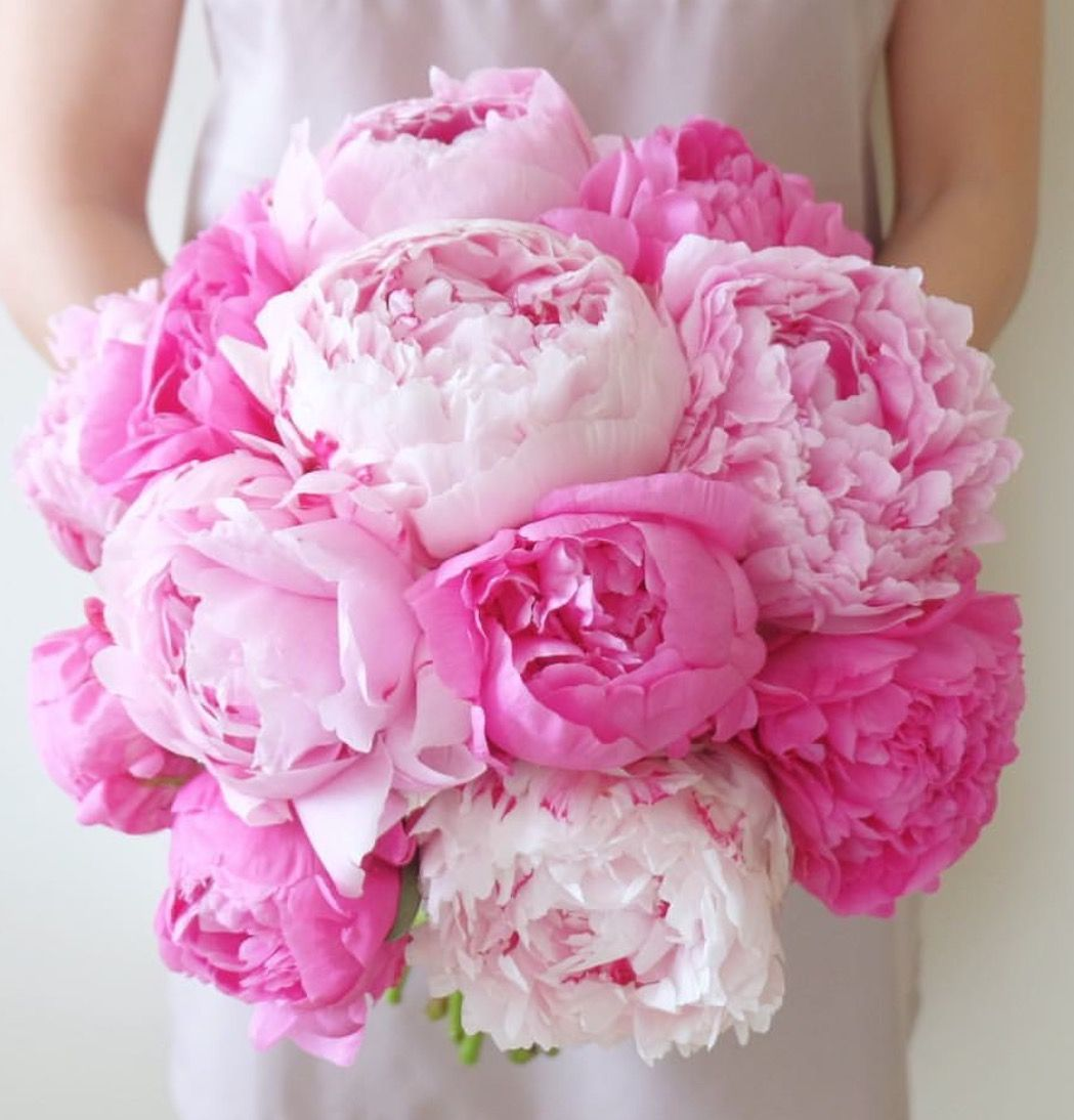 Beautiful June Wedding Flowers Arrangements: A Beautiful Wedding Bouquet Of Pink Peonies.