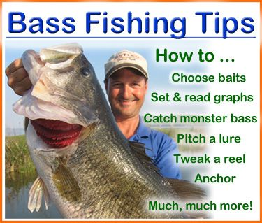 Bass fishing tips an exclusive guide on how to choose for Bass fishing tips