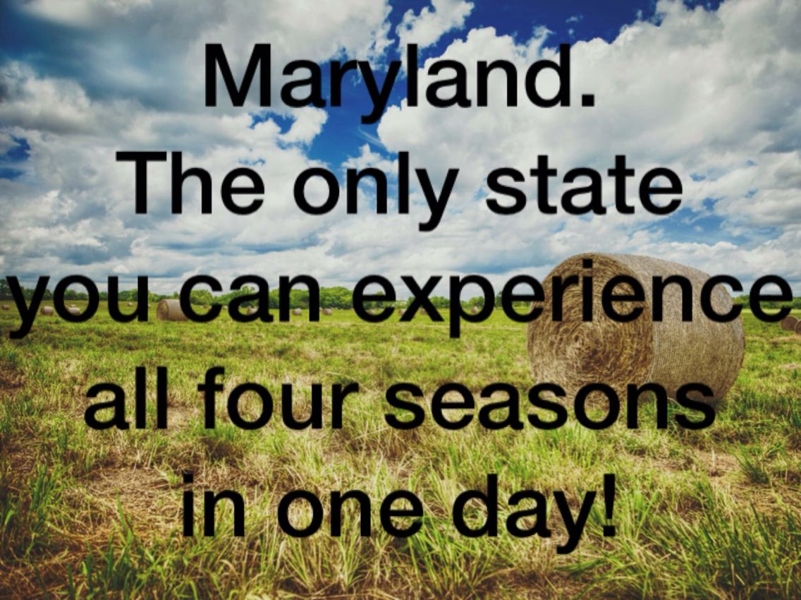Oh Maryland... Four seasons, Maryland, Quotes