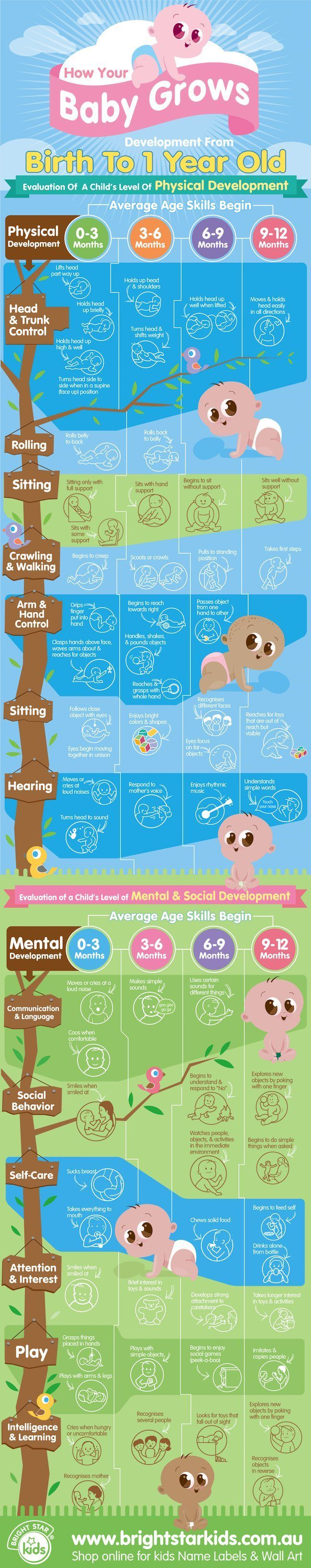 How your baby grows and develops chart from bright star kids here is fun and interesting infographic about baby development see all the changes your baby goes through from months old geenschuldenfo Choice Image